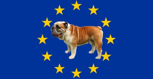 Flag_of_Europe-bouledogue