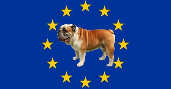 Flag_of_Europe-bouledogue